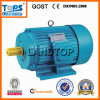 TOPS Y Series Induction Motor Three Phase Cast Iron Body