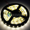 High Bright Good Price SMD5054 LED Strip 60LEDs/M Light