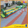 Obstacle Course Inflatable Tropical Grand Combination Game (AQ01698)