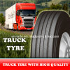 Annaite Brand Trailer Tyre with Fast Delivery