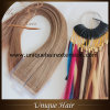 Wholesale Price Tape in Hair Extensions