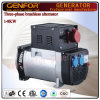 1-10kVA Italy Type Brush & Brushless Alternator with Good Quality Best Price for Sale