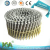 15 Degree Hot DIP Galvanized Coil Nails