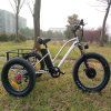 Old Man 48V 500W Fat Tire Cargo Electric Tricycle Trike