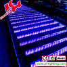 240PCS RGB LED Wall Wash Light