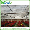 Commercial Tunnel Film Greenhouse for Flower Growing