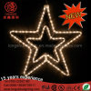 LED Double Star Shape Decorative Light for Holiday