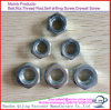 ASTM A194 Grade 4.8 8.8 10.9 2h Heavy Nut