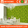 Decorative Vinyl Wallpaper for Home Decoration