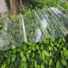 Clear and Colored Polycarbonate Corrugated Plastic Roofing Sheets