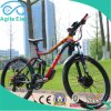 36V 250W Motorized Mountain Electric Bike with LCD Display
