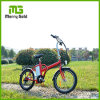 New Foldable Electric Bicycle Compact City Bike