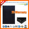 250W 125*125 Black Mono Silicon Solar Module with IEC 61215, IEC 61730
