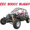 800CC Dune Buggy (MC-414)