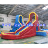 Two Lane Slide with Pool, Inflatable Slide, Inflatable Pool Slide