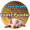 Animal Feed Yeast Powder with Professinal