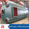 Double-Drum Water Tube Oil Gas Fired Steam Boilers