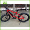 Full Suspension Fat Tire Electric Bicycle with Center Moter