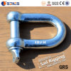 Dee Type Carbon Steel European Type Shackles