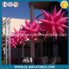 Hot Sale Event, Garden Decoration Inflatable Stars Balloon for Sale