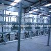 Glass Milk Bottle Herringbone Milking Parlour for Cows