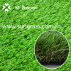 Simulation Carpet for Garden or Landscape (SUNQ-AL00062)