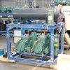 Bitzer Compressor Unit for Apple Cold Room