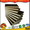 Good Quality Film Faced Plywood/Black/Brown Film with Competition Price