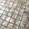 Dapple River Shell Mosaic Tile with Ceramic Base (BFW-CB-SQ25)