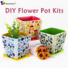 DIY Creative Meaty Flowerpot Kits Material Package Festival Activity Gift Parent-Child Handmade ...