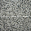G623 Granite Polished Tile for Floor/ Wall Cladding
