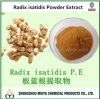 Radix Isatidis /Isatis Indigotica Fort Powder Extract for Medicine of Antiviral, Antibacterial
