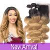 Ombre Brazilian Hair with Closure Brazilian Virgin Hair Body Wave