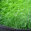 Labosport Certificated 50mm Supreme Football Artificial Grass