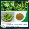 Abelmoschus Esculentus Extract/ Okra Extract Powder