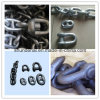 Crown Anchor Shackle of Marine Hardware
