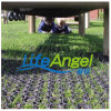 Anti-Slip Rubber Mat, Grass Rubber Mat, Antibacterial Floor Mat