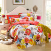 China Manufacture Hot Selling Printed Cotton Bedding