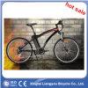 Goog Quality Low Price 26''mountain Bicycle E Bike