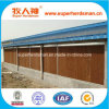 High Cost-Effective Poultry Feeding Equipment for Poultry House Cooler