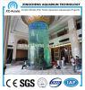Transparent UV Acrylic Cylinder Aquarium of Cylinder Tank