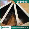 18mm Waterproof Film Faced Construction Formwork Plywood for Building Concrete Use