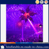 Amazing Design Party Decoration Lighting Inflatable Star with Changeful LED Light for Sale