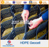 High Tensile Strength Polyethylene HDPE Geocell Price