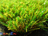 Multicolor Artificial Grass for Landscaping