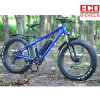 Fat Tire Sand Bike Beach Bicycle with Lithium Battery
