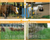 Hot-DIP Galvanized 8ft Field Fence for Farm&Animals