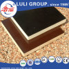 Film Faced Plywood From Luli Group