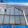 Galvanized Steel Structure Glass Cover Used Commercial Greenhouses for Tomato