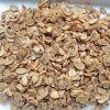 Metal Can Glass Jar Packaging Fresh Material Good Selling Canned Mushroom